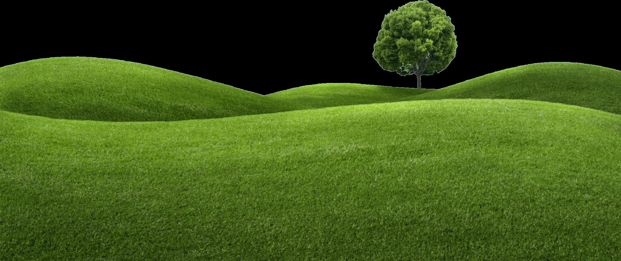 harrogate grass machinery